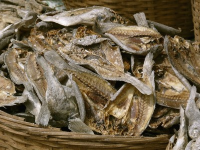 Dried fish at fish market - Ratnagiri, Maharashtra, India