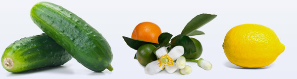 Cucumber, Orange Blossom & Lemon - some of the natural ingredients in Dr. Ron's body care line