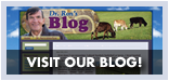 Visit Dr. Ron's Blog!